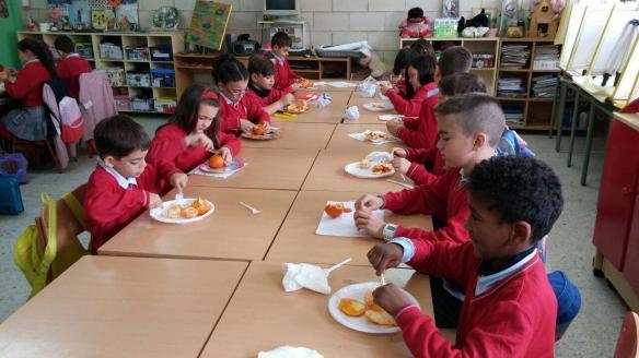 fruta-escuela
